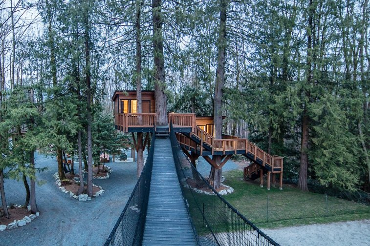 courtney treehouse estate 1
